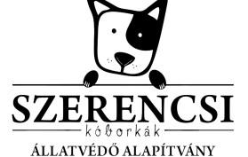 Szerencsi Kóborkák Állatvédő Alapítvány